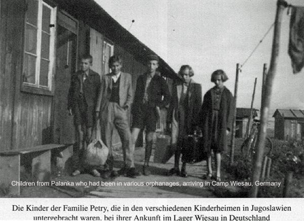 Donauschwaben History | Atrocities Index